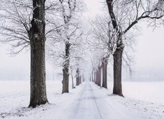 Agroturystyka i zima